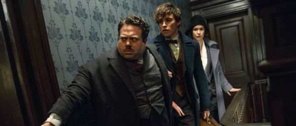 film fantastic beasts - jacob, newt scamander, tina